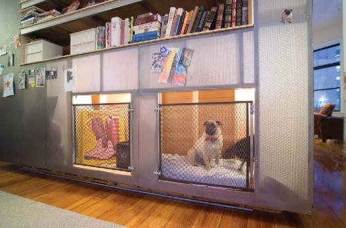 beautiful zbox with niche interieur chien