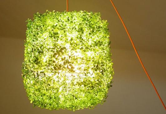 lampe-herbe