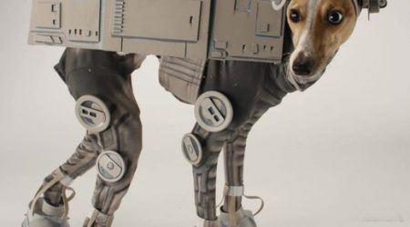 costume-star-wars-chien