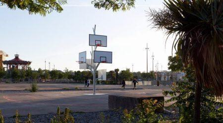 arbre-basket-3