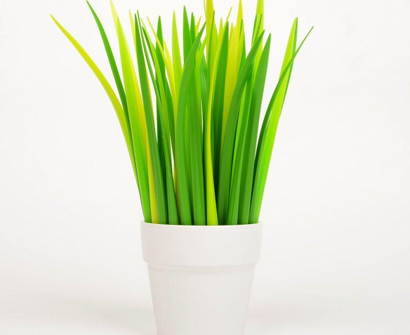 pot-crayon-herbe